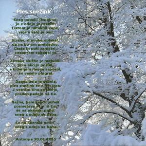 Ples snežink - pesmica